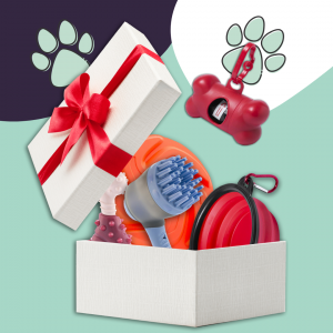 For Your Dog Giftbox